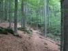 Wandern Steinfelsenhänge