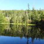 Martinsklause Lusen Bayerischer Wald