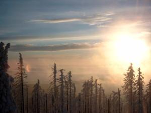 Winter Wandern im Bayerischen Wald