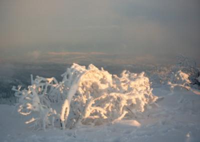 Winterimpressionen aus dem Bayerwald