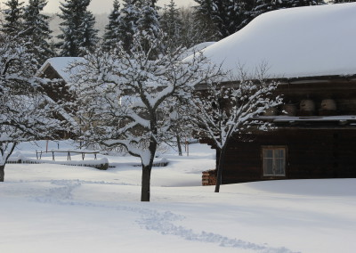 Freilichtmuseum FInsterau Winter
