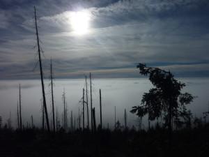 Herbst Bayerischer Wald Dreisessel Wandern