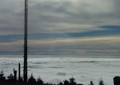 Wandern Dreisessel Bayerischer Wald Herbst