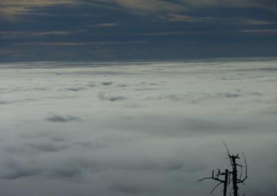 Dreisessel Bayerischer Wald Wandern Herbst