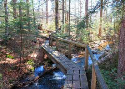 Bayerischer Wald Seelensteig