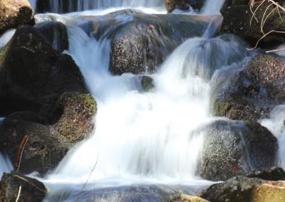 Nationalpark Bayerischer Wald Seelensteig Wandern