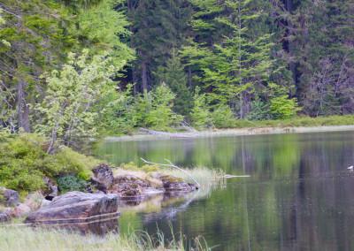Wandern Rachel See Bayerischer Wald