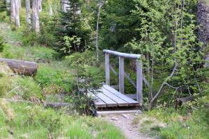 Wandern Rachel Felsenkanzel Bayerischer Wald