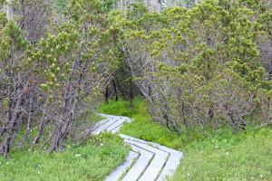 Schachtenwanderung Bayerischer Wald