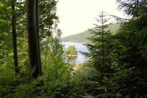 Trinkwassertalsperre Frauenau Bayerischer Wald