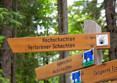 Wandern Schachten Bayerischer Wald Nationalpark