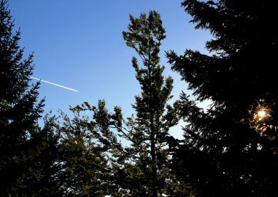 Lusenwanderung Bayerischer Wald