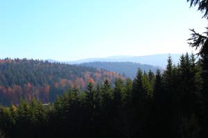 Bayerischer Wald Wandern Herbst