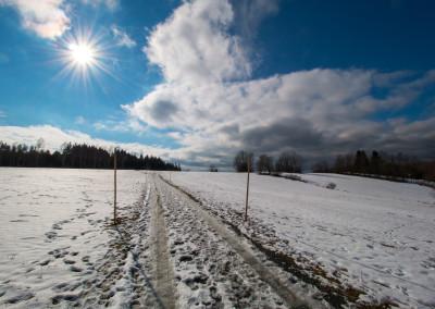 Wandern Bienstand Riedlhütte