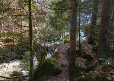 Wanderweg Bayerischer Wald Steinklamm Spiegelau