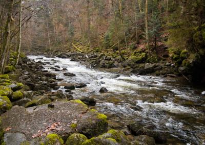 Wolfsteiner Ohe Bayerischer Wald