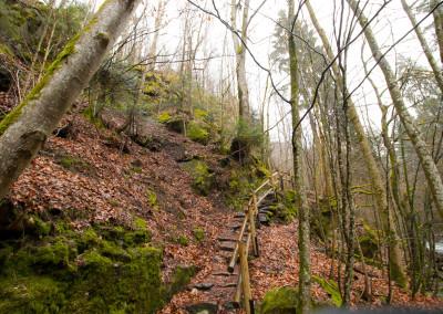 Buchberger Leite Bayerischer Wald