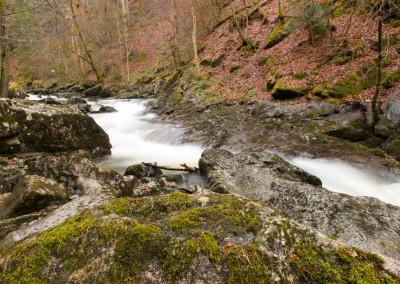 Wildbachklamm Buchberger Leite Freyung Bayerischer Wald