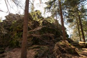 Kleiner Falkenstein Wandern Bayerischer Wald