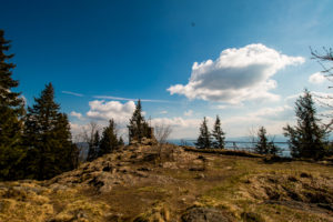 Großer Falkenstein Bayerischer Wald