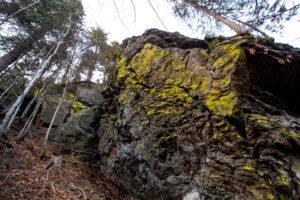 Wandern Falkenstein Bayerischer Wald