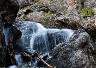Nationalpark Bayerischer Wald Falkenstein