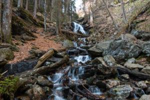 Wandern im Bayerischen Wald