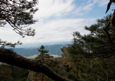 Bayerischer Wald Kaitersberg Wandern