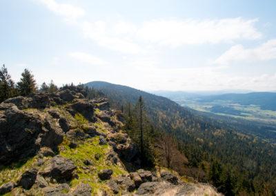 Ausblick Kaitersberg Bayerischer Wald