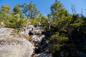 Zum Lusen Bayerischer Wald