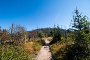 Zum Lusen über die Himmelsleiter im Bayerischen Wald