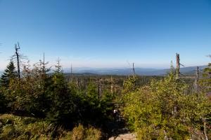 Ausblick Himmelsleiter Lusen Bayerischer Wald