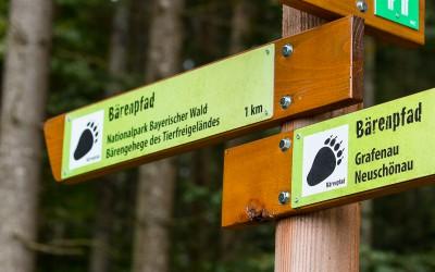 Der Bärenpfad von Grafenau nach Neuschönau ins Tierfreigelände