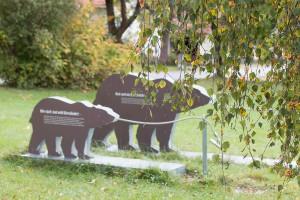 Bärenpfad Grafenau Bayerischer Wald