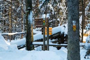 Winterwandern Tierfreigelände Bayerischer Wald