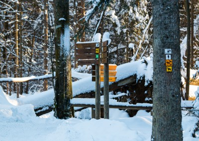 Winterwandern im Tierfreigelände