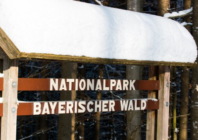 WInter Nationalpark Bayerischer Wald