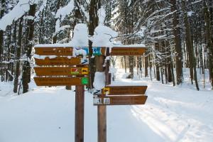 Winterwandern Bayerischer Wald Nationalpark