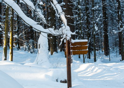 Winter Wandern im Nationalpark Bayerischer Wald