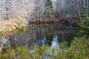 Wandern Sagwasserklause Bayerischer Wald