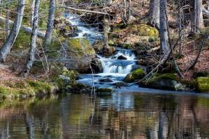Sagwasserklause im Nationalpark Bayerischer Wald