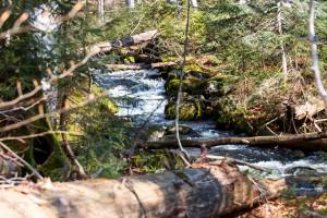 Wandern zur Sagwasserklause Bayerischer Wald