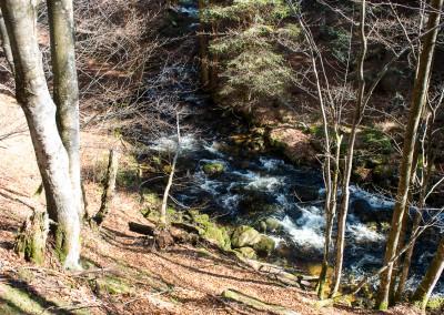 Sagwasser Bayerischer Wald