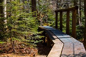 Der Seelensteig im Bayerischen Wald