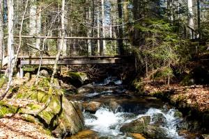 Seelensteig Bayerischer Wald