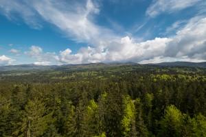 Bayerischer Wald Impressionen