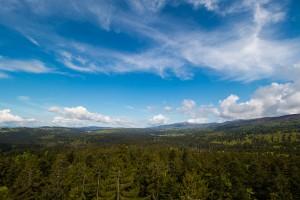 Ausblick auf den Bayerwald