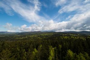 Bayerischer Wald Landschaft