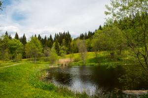 Kurpark Spiegelau Bayerischer Wald