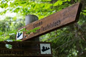 Wandern im Nationalpark Bayerischer Wald